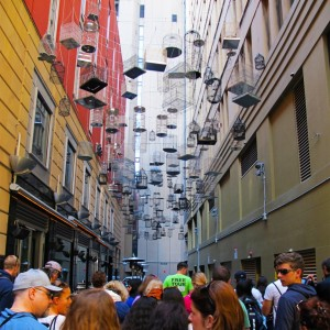 'Sydney Sights' Tour - Lane way Art, Angel Place